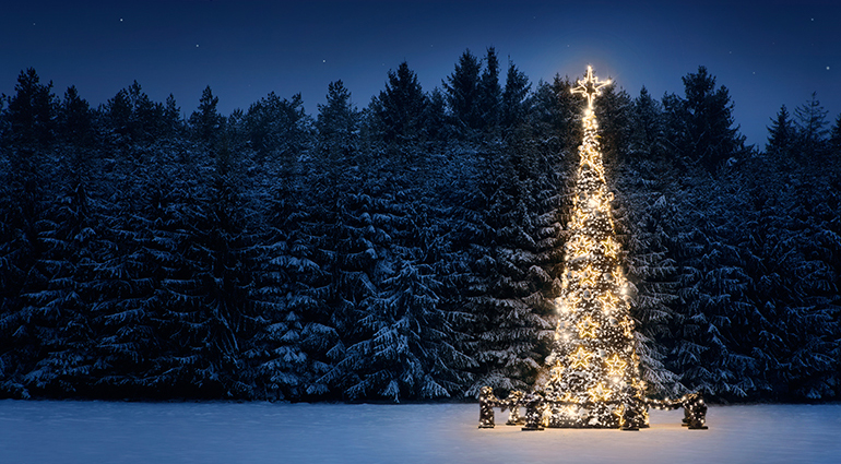 Silent Night of the Soul